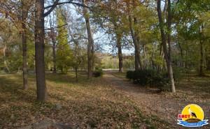 Курортный парк Город-курорт Саки