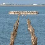 Город-курорт Саки - Сакское лечебное озеро